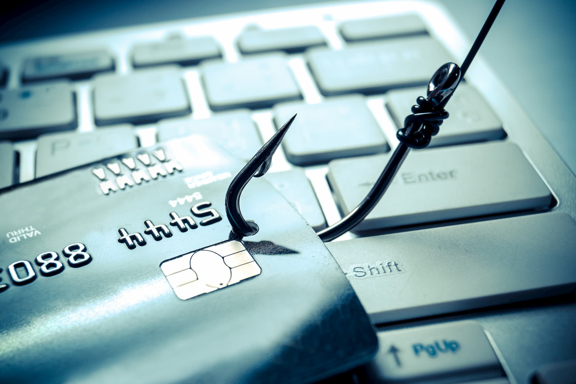 cyber-phishing