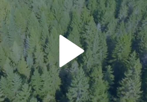 PrintReleaf-Video-Thumbnail
