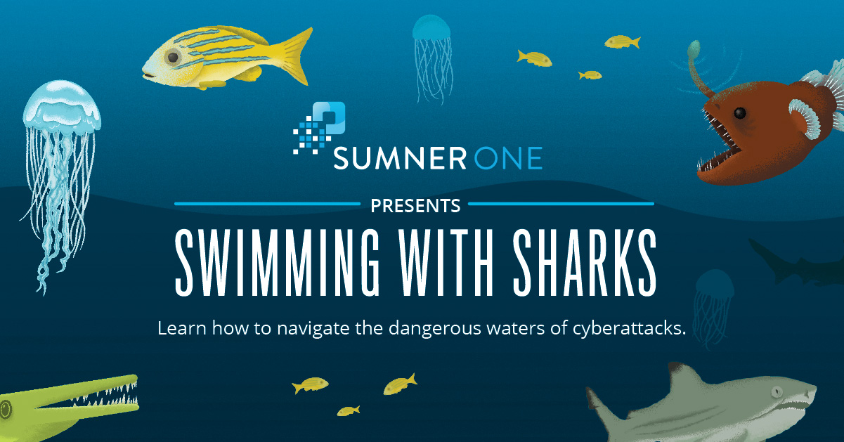 Swimming-with-Sharks-infographic-SumnerOne.jpg
