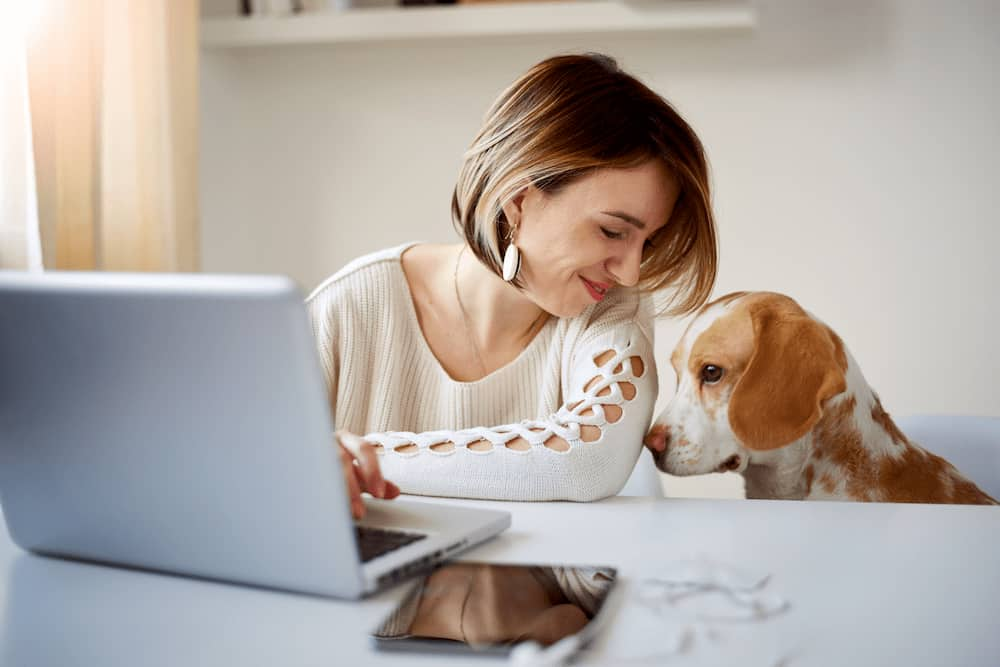woman-working-from-with-her-dog
